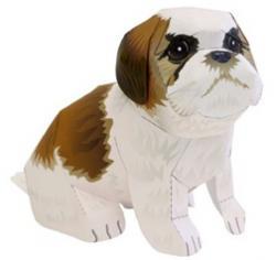 chien-modele.jpg