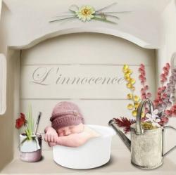 mini-innocence.jpg