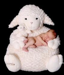 mini-mouton.jpg